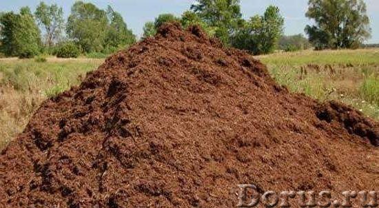 Перегной - Прочее сырье - Перегной, навоз, торф, земля чернозем, полевая, суглинок, глина. Щебень, о..., фото 1